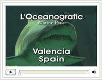 Click here for the Valencia video of the Oceanographic