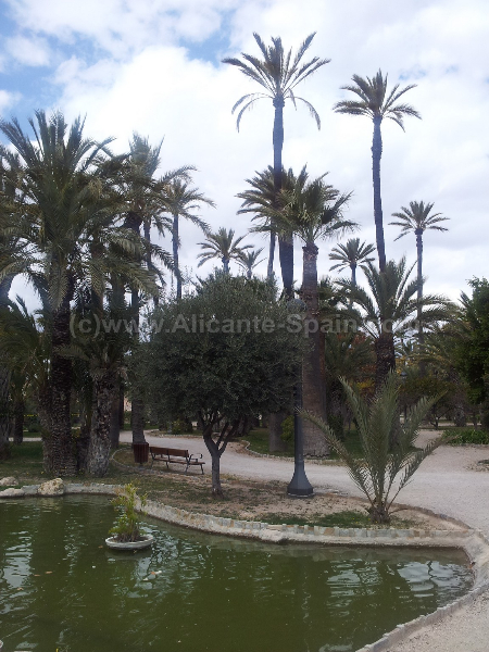 City of Elche Spain 20120319_134223