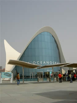 the oceanografic marine park in valencia